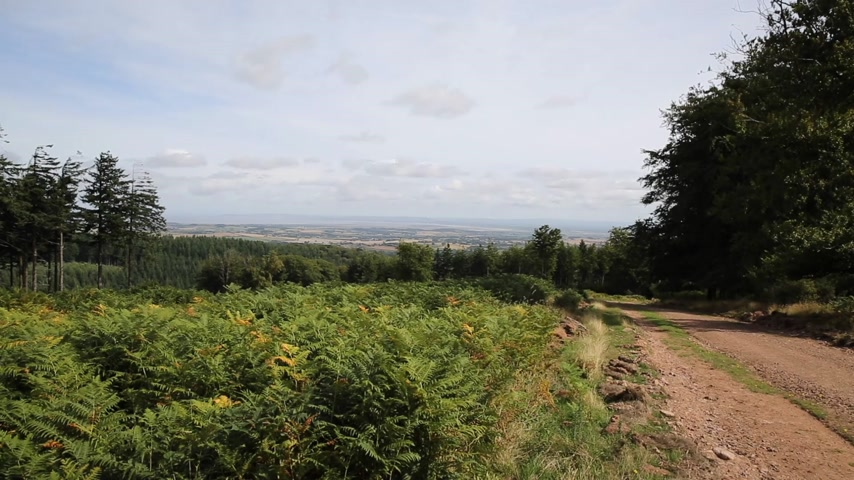 İngilizce : View from on the Quantock Hills Somerset England towards Bristol Channel