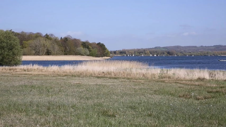kopec : Chew Valley Lake and reservoir Somerset England an important site for wildlife  birdwatching sailing and fishing