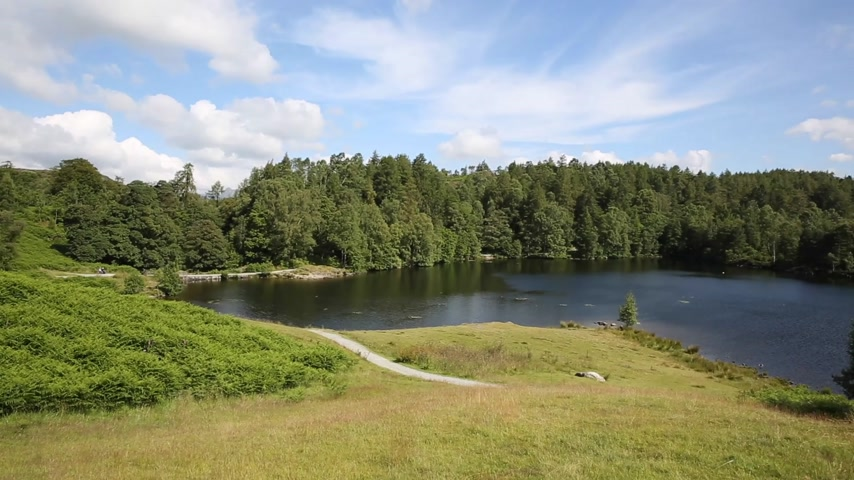 kerület : Tarn Hows near Hawkshead Lake District National Park England uk on a beautiful sunny summer day with no rain!