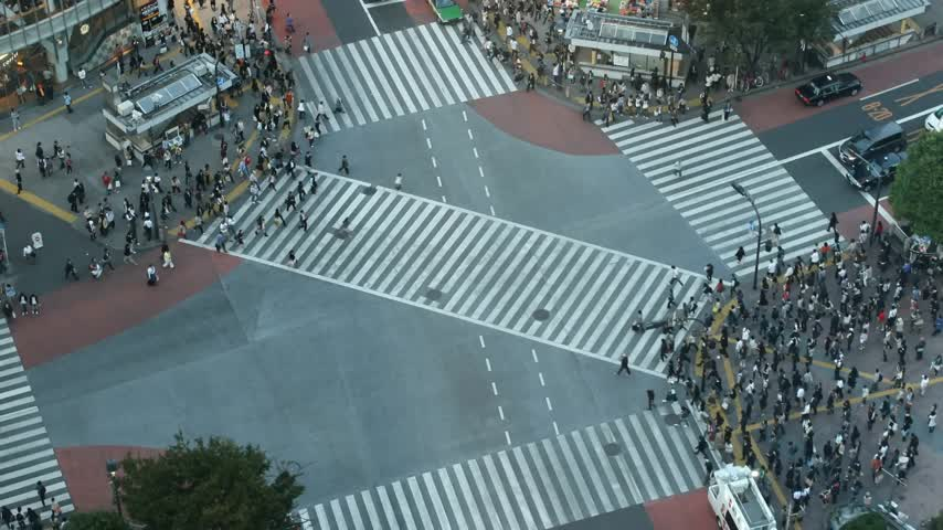 tokio : Time lapse famous Shibuya (Tokyo) cross-walk from high above (rare view) at sunset. It is getting dark in the video. All trademarks are blurred or erased.  Wideo