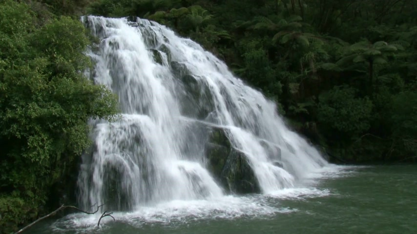 krzak : Corromandel Peninsula, North Island, New Zealand. View over the Owaroha waterfalls in the coromandel