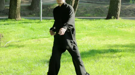quimono : Training in the park. Man practicing elements of tai chi. HD