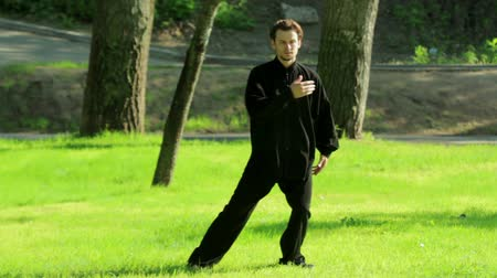 chi : Training in the park. Man practicing elements of tai chi. HD