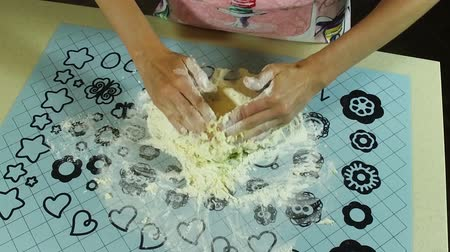tartlet : Cooking a pie. The woman mixing flour, egg, water and butter. Slow motion. HD