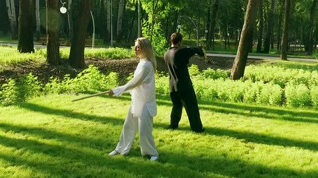 chi : Qigong. Exercise with a wooden stick. Man and woman practicing qigong. Slow motion. HD