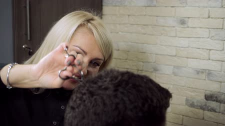 vágás : Hair-cutting at barbers. Female blonde hairdresser cutting hair of dark-haired man at beauty parlour. HD