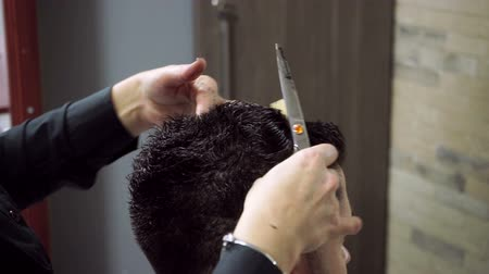 cutting up : Haircut at barbers. Female hairdresser shaping mens hair into a style by cutting. HD