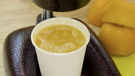 squeezer : Close-up shot of freshly squeezed orange juice flowing from the juicer into a paper cup. 4K