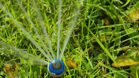 орошение : Close-up of a nozzle for spraying water by automatic watering system for lawn with lush green grass in sunny day. Slow motion. HD