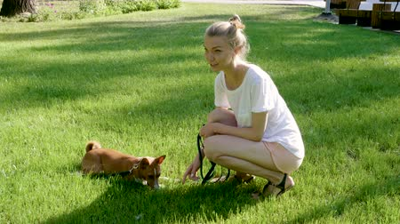 itaat : Pets. Young blonde woman is stroking her beautiful basenji dog with one hand. 4K