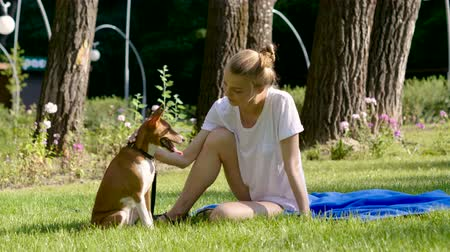привязь : Pets. Young blonde woman is stroking her basenji dog, smiling and looking at camera. 4K Стоковые видеозаписи