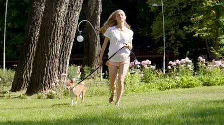 young animal : Beautiful blonde girl running with her basenji dog on leash at sunny day in summer park. Slow motion. HD