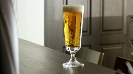 cidra : One pint of beer standing on the bar counter in a modern restaurant. 4K Vídeos