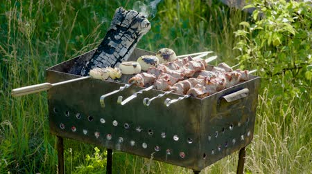 roston sült : Pork barbecue strung on skewers roasted on the grill. 4K Stock mozgókép