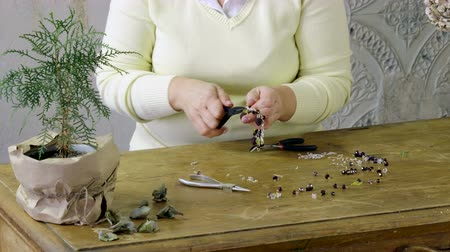 juwelier : The young woman creating handmade jewelry bracelet in the studio. 4K