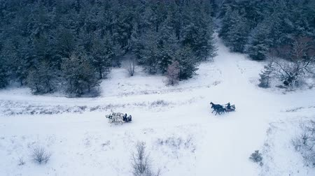 maiden : Aerial view of troika. A Russian carriage drawn by a team of three black and three white horses side by side. 4K