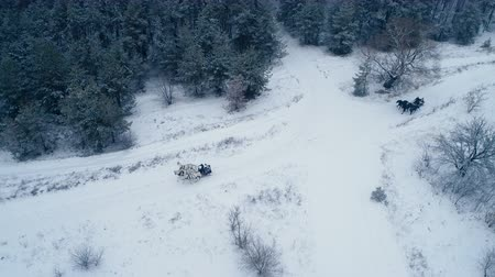 sáně : Aerial view of troika. A Russian carriage drawn by a team of three black and three white horses side by side. 4K