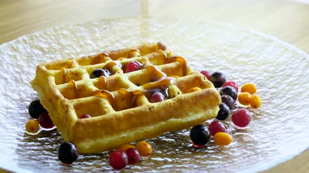 brusinka : Sweet breakfast. Close-up shot syrup or honey is being pouring on viennese waffles with fresh berries. 4K