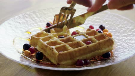 buckthorn : Eating Breakfast. Close-up shot of womens hands cutting viennese waffles with a knife and fork. 4K
