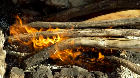 Campfire. Open fire with firewood made outdoors by people who are camping. Greece. Slow motion. HD Stock Footage