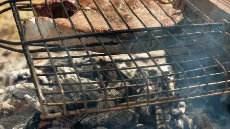 marinado : Close-up shot of delicious grilled tuna fish on barbecue grill. Slow motion. HD