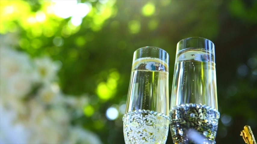 espumante : wine glasses on the grass with green background