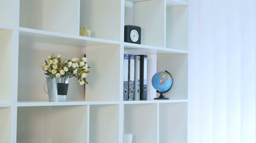 dobrador : beautiful young business woman holding folder in bright office at office