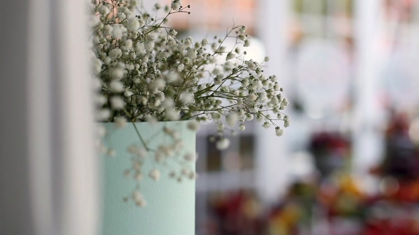 adem : Gypsophila bloemen in een vaas Stockvideo