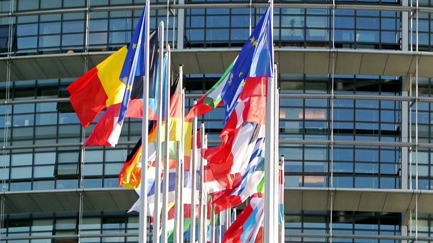 avrupa birliği : European Union countries flags with European Parliament in the background - shot in Strasbourg, France