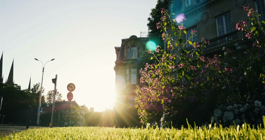 camionagem : Cargo truck on urban street with beautiful lens flare, yellow grass and building facade Stock Footage