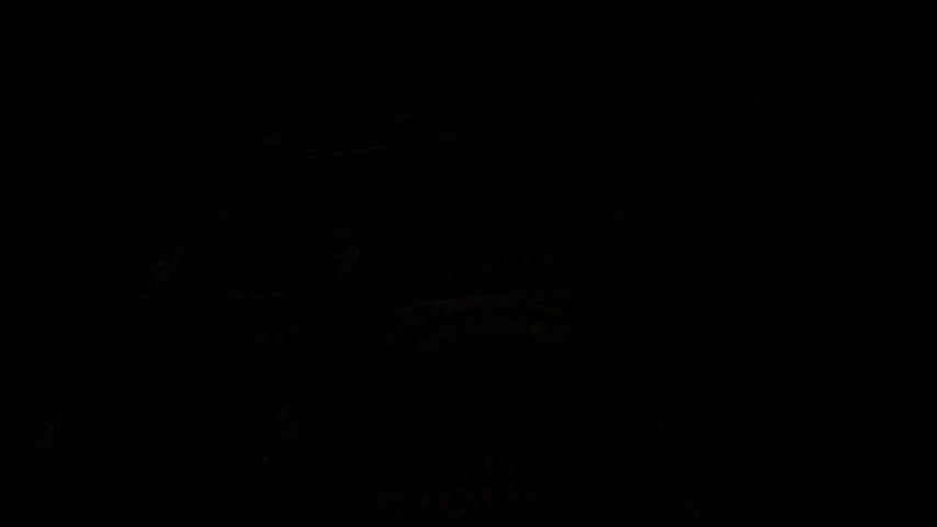 strasburg : STRASBOURG, FRANCE - CIRCA 2015: Strasbourg Notre-Dame Cathedral building projection mapping light show during annual light show for the 1000th anniversary of the Strasbourg Cathedral Stock Footage