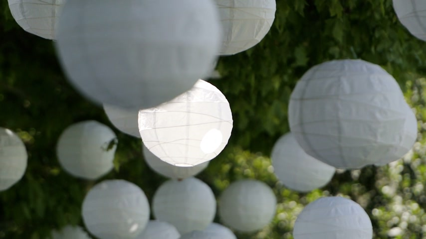 famílias : Chinese lanterns Asian holiday - hanged on green trees dancing beautifully in the calm wind with summer cicada sound in the background Stock Footage