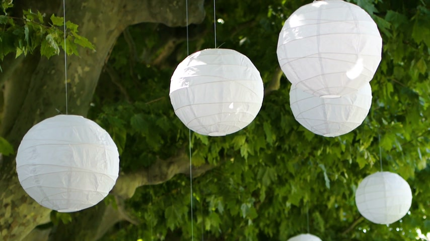 famílias : Beautiful Chinese lanterns Asian holiday - hanged on green trees dancing beautifully in the calm wind with summer