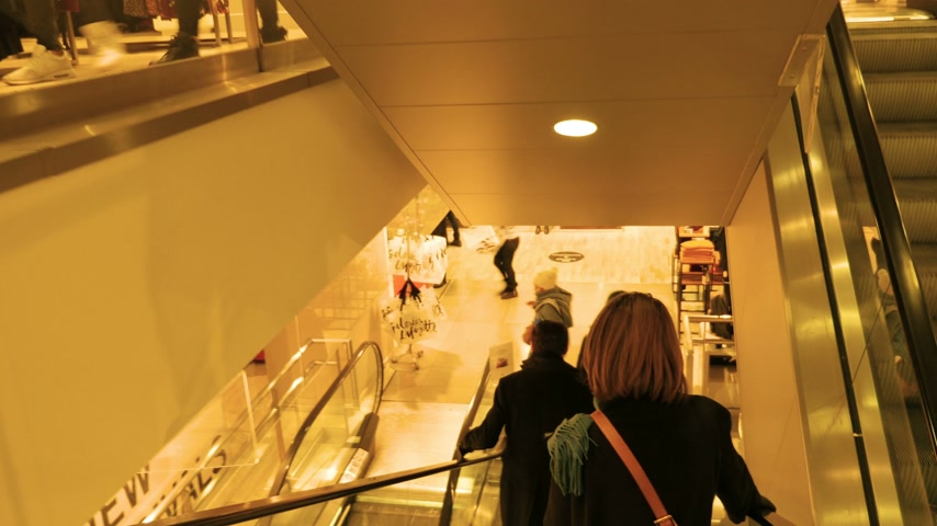 lafayette : STRASBOURG, FRANCE - CIRCA 2017: Rear view of woman descending ascending the escalator stairs of the fashion store Galeries Lafayette In Strasbourg, France - the luxury upmarket French department Stock Footage