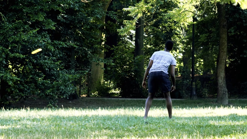 recreational park : PARIS, FRANCE - CIRCA 2017: Black ethnicity man playing frisbee in green summer park at sunset - catching being fit Stock Footage