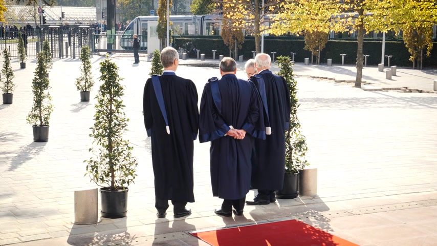 european court of human rights : STRASBOURG, FRANCE - OCT 31, 2017: Rear view of European Court of Human Rights president Guido Raimondi (c) next to French judge Andre Potocki (l) and the registrar Roderick Liddell (r), Macron visit