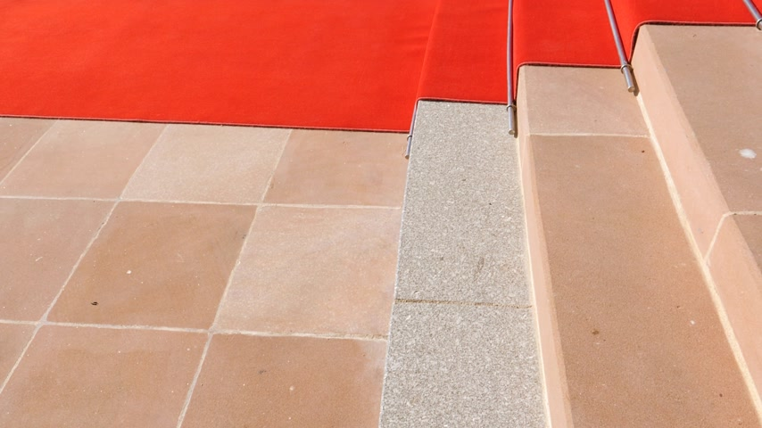 european court of human rights : Red carpet on the stairs of European Court of Human Rights in Strasbourg ready for official delegation and visits of high ranked officials