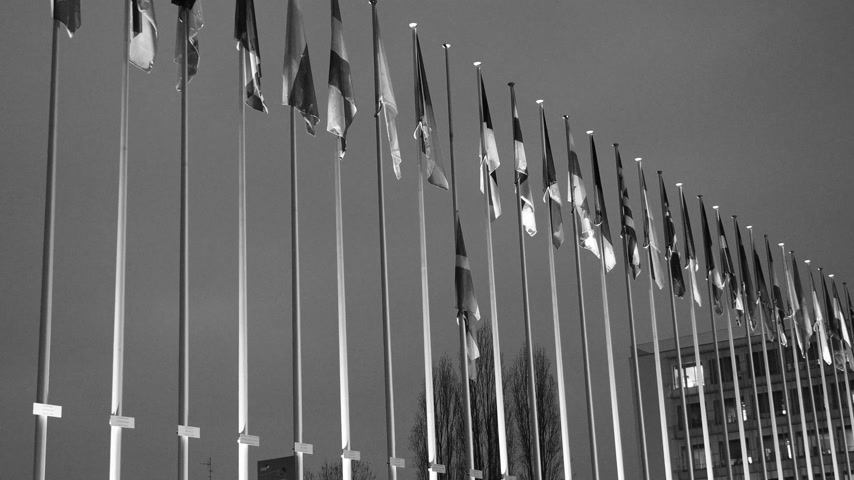 flag half mast : Denmark national flag flying half mast among other European union country member flags - Denmarks Prince Henrik dies aged 83 - cinematic series - black and white Stock Footage