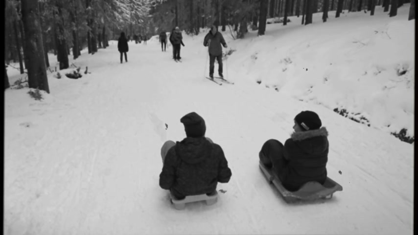 seebach : MUMMELSEE, GERMANY - CIRCA 2018: Vintage filter over cinematic view of two young boys sleighing the sledding slope in German mountains with other adults hiking - black and white