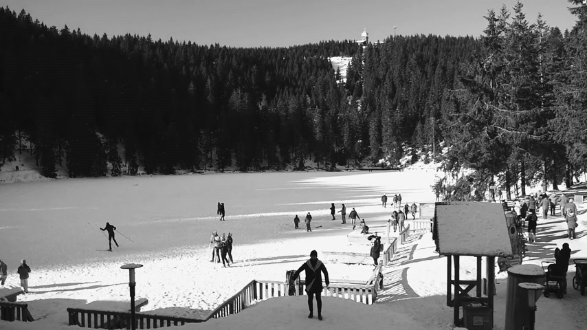 arborizado : Seebach Mummelsee, Germany - Circa 2018: View from above of the frozen Mummelsee lake - skiing, having fun parents with kids and pets - funny weekend in Baden Wurttemberg Black Forest black and white