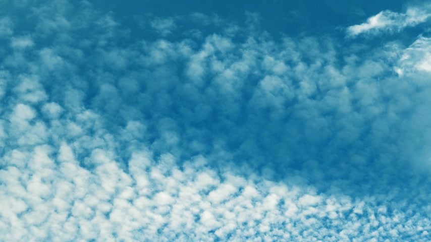 altitude : Majestic cyan cirrocumulus clouds at altitude of 5 km on a summer afternoon view from below in 4k UHD cinematic mode