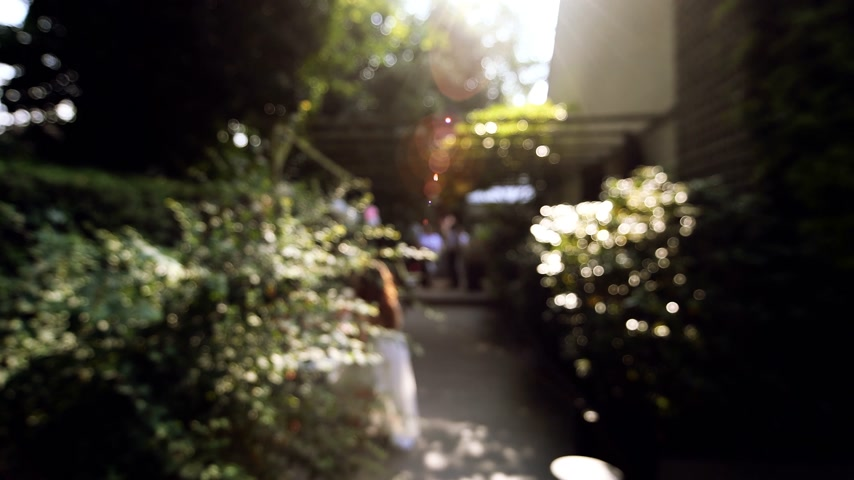 reception : Defocused view of cinematic wedding reception in the outdoor patio garden of a luxury house with tall trees and long cinematic flare