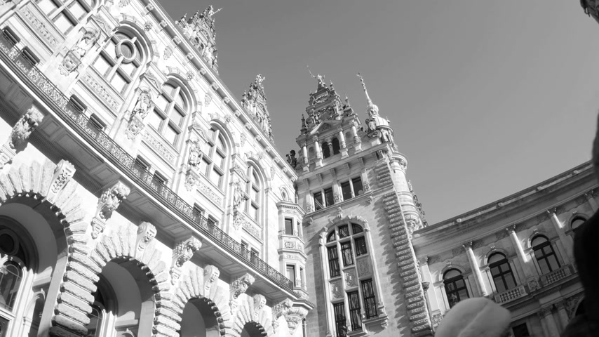 rathaus : HAMBURG, GERMANY - CIRCA 2018: Black and white tourists passing in front of the majestic Hamburg City Hall Hamburger Rathaus facade the seat of local government of the Free and Hanseatic City of Hamburg