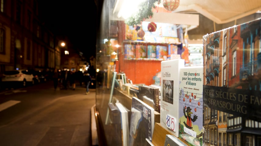bookshop : STRASBOURG, FRANCE - CIRCA 2018: Focus on the book from the Dinali bookstore in central Strasbourg with perspective view to pedestrians walking in the background time-lapse fast-motion Stock Footage