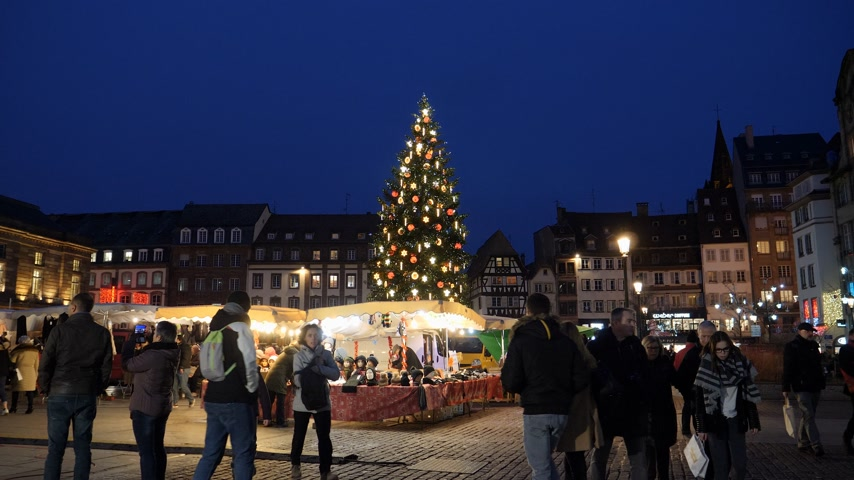 alsatian : STRASBOURG, FRANCE - CIRCA 2018: Evening shot of people visiting the clothes market in central Place Kleber during the Christmas Market with large fir tree illuminated in the background