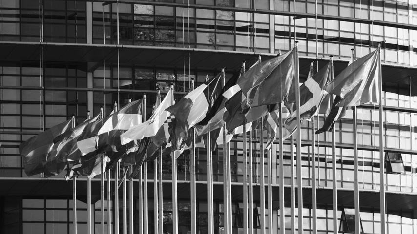 all european flags : STRASBOURG, FRANCE - CIRCA 2018: Establishing shot newsworthy footage of European Parliament headquarter facade building with flags of all member states waving - black and white