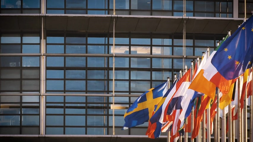 all european flags : STRASBOURG, FRANCE - CIRCA 2018: European Parliament headquarter facade building with flags of all member states waving - pan left to right