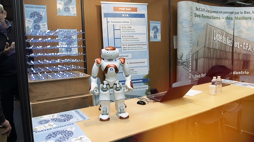 rehberlik : STRASBOURG, FRANCE - CIRCA 2018: Robot motion making diverse karate martial arts gestures at technical IT college stand during Education Fair