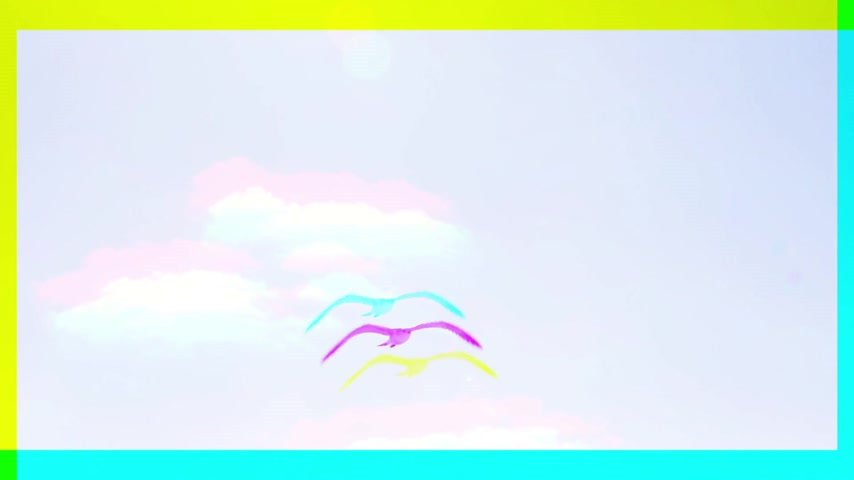 бдительность : Abstract three channel color beautiful slow motion freedom concept with flying toward camera seagull bird against white clear sky