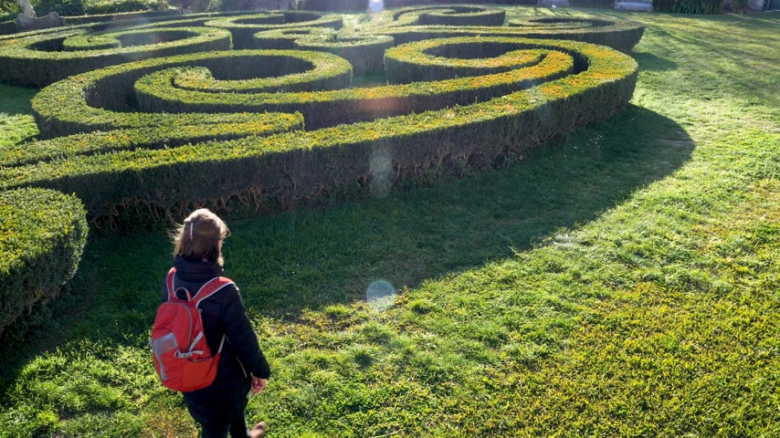 labirent : Elevated view of curious woman walking in English garden near maze of buxus plants with beautiful flare - discovery of gardens in old Lisbon Park